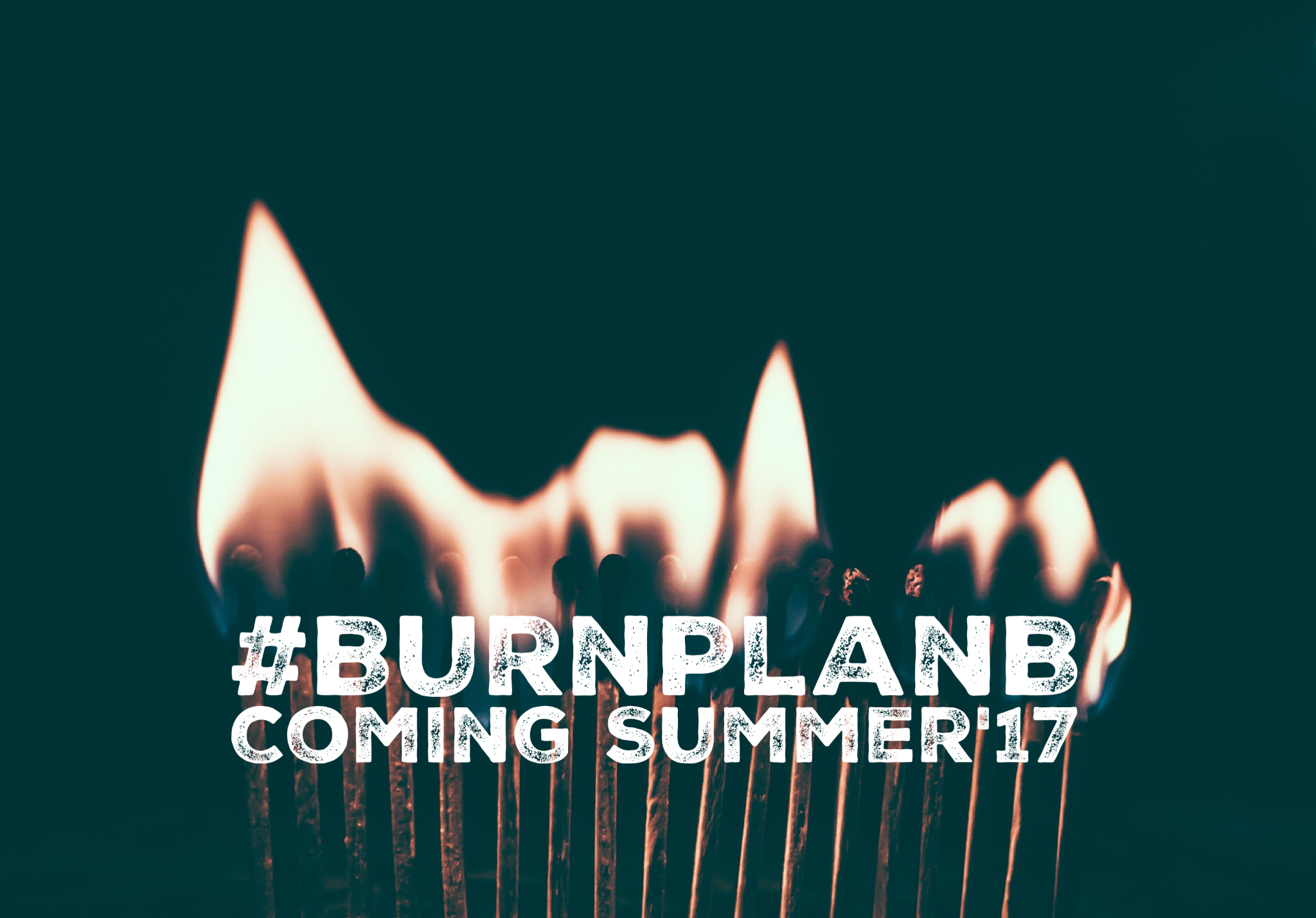 """Burn Plan B"" Book by Alexamdra Figueredo"